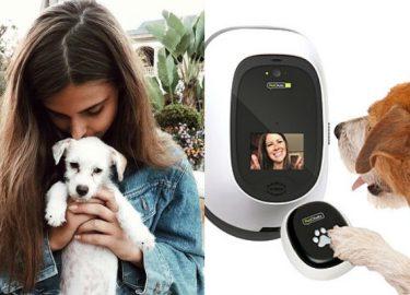 bellen met je hond