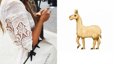 alpaca emoticon