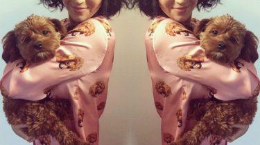 pyjama huisdier