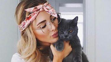 professionele kattenknuffelaar