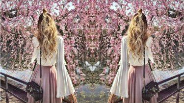 kersenbloesemtijd japan