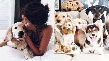 kussen van je huisdier