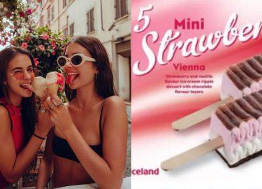 Viennetta ijsjes