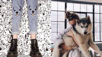 honden broek