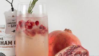 gin-tonic bezorgen