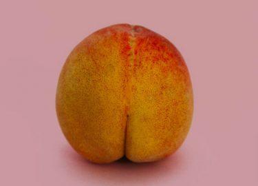 standaard vagina
