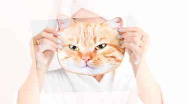 kattenvrouwtjes