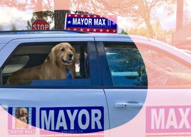 hond burgemeester