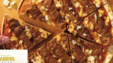 frikandel special pizza van lidl