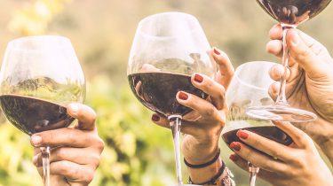 wijn vakantie vakantiepiraten