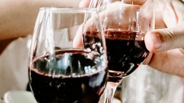 kater van rode wijn