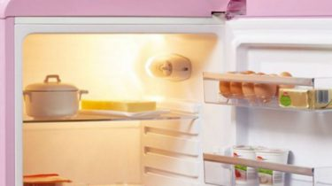 roze koelkast van lidl