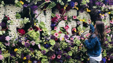 de bloemenmuur in het vondelpark