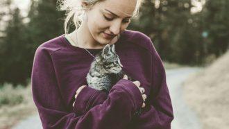 katten houden