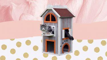 kattenhut van lidl aanbieding