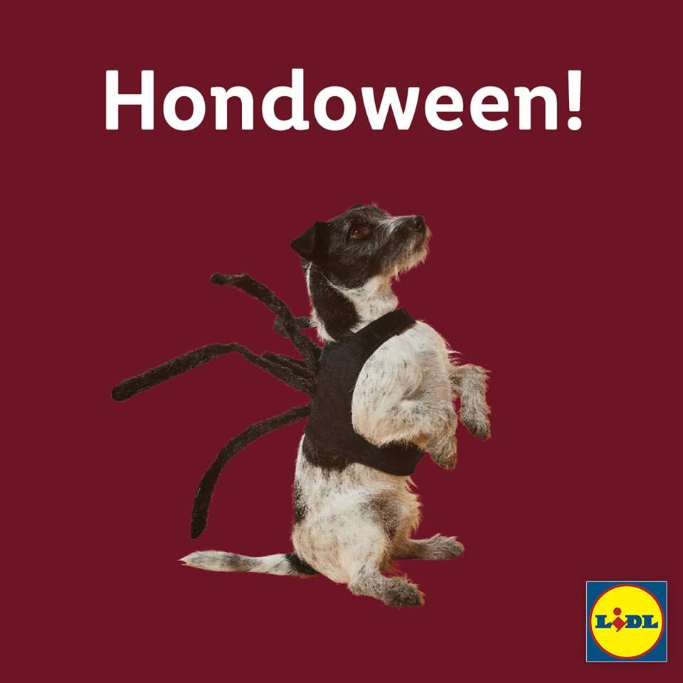 lidl hondenpakjes voor halloween