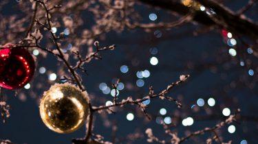 kerstbomen doolhof Leidsche Rijn Centrum