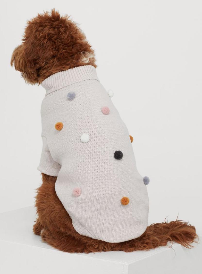 outfits voor honden